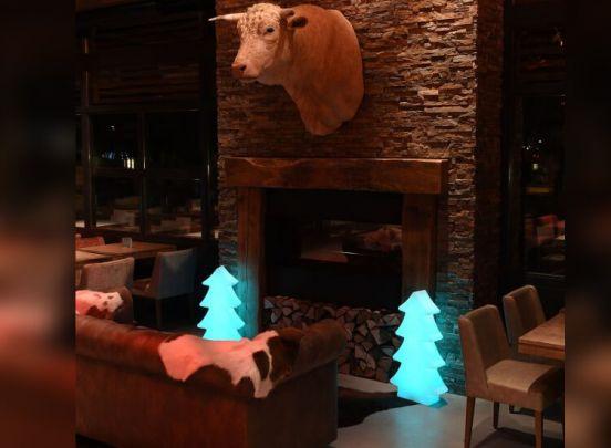 Verlichte kerstboom - voor binnen of buiten - draadloos te gebruiken
