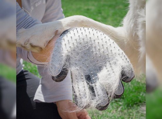 InnovaGoods Handschoen om Huisdieren te Kammen en Masseren