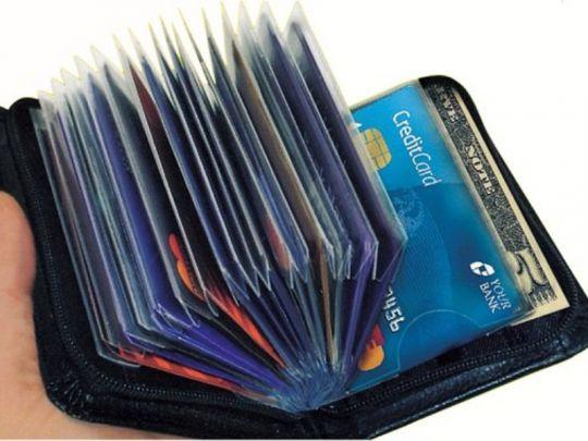 Pasjeshouder - 30 pasjes - RFID Blokking