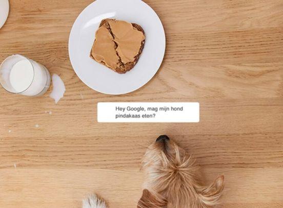 Google home mini - Assistant mini speaker  - Ondersteunt Nederlands