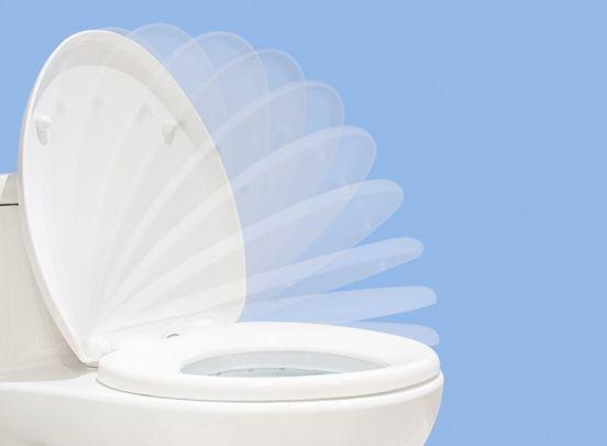 Afneembare Soft-Close Toiletbril